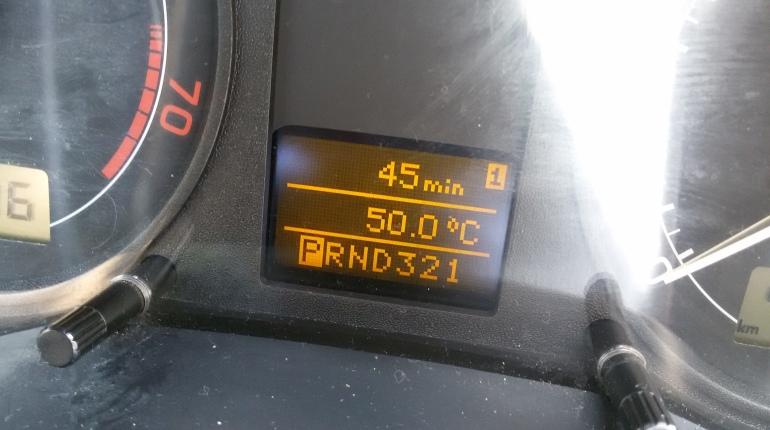 כשמד החום ברכב מראה 50 מעלות, אתם מבינים שהייתם צריכים להישאר בבית
